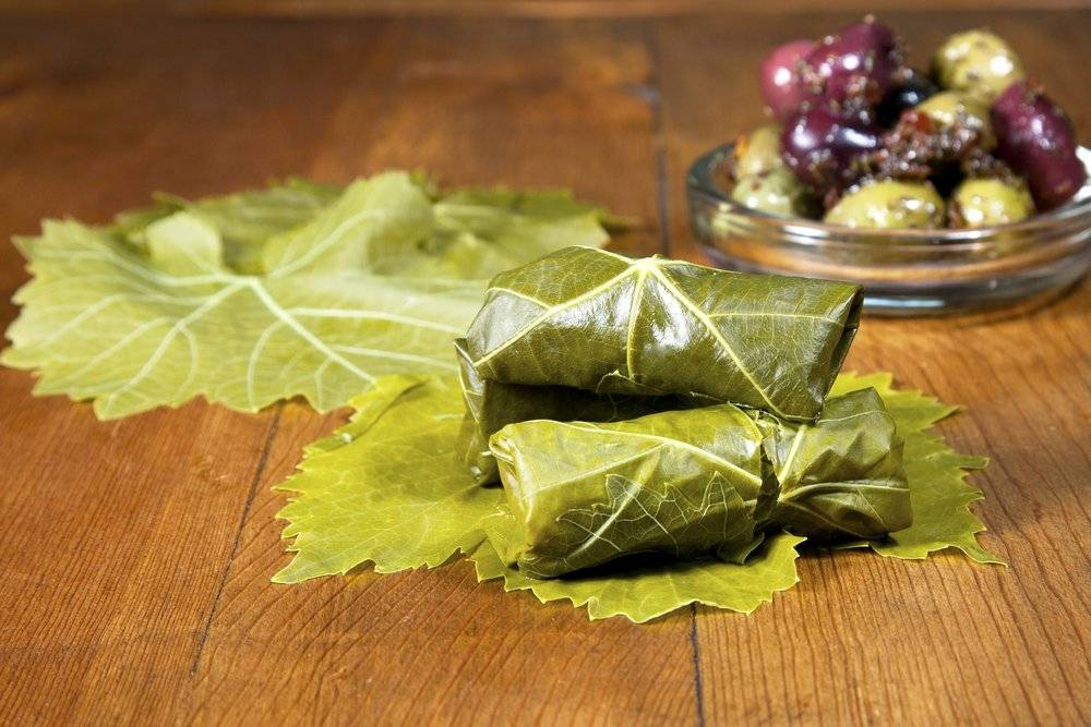 Виноградные листья на зиму  как подготовить, как мариновать и солить, рецепты