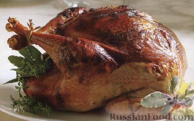 Филе индейки, запеченное в духовке — 10 вкусных рецептов сочной и мягкой индейки