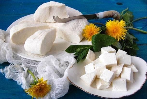 Шахи панир (сыр в томатном соусе) рецепт с фото, как приготовить на webspoon.ru