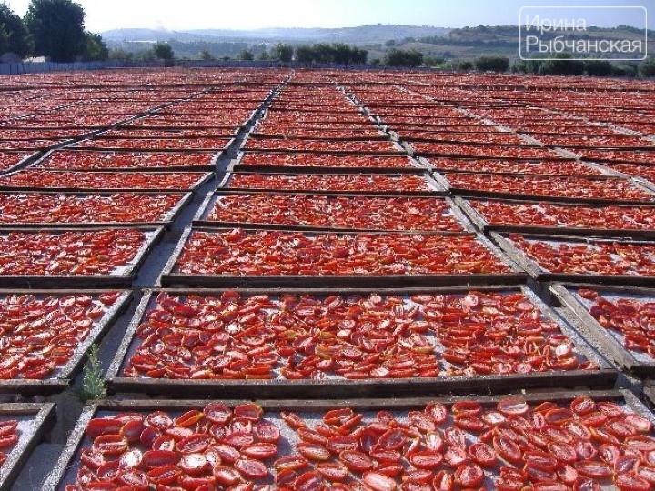 Как приготовить и куда использовать вяленые помидоры
