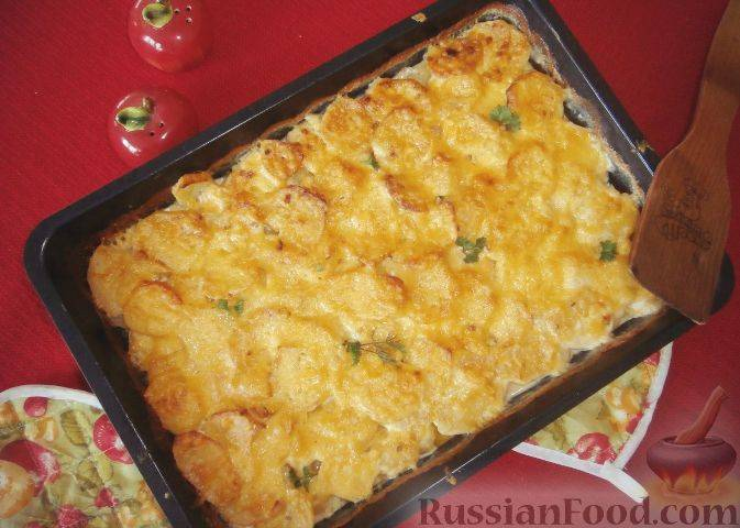 Рецепты картофельного гратена