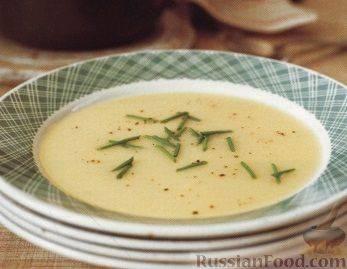 Суп-пюре из картофеля и лука-порея