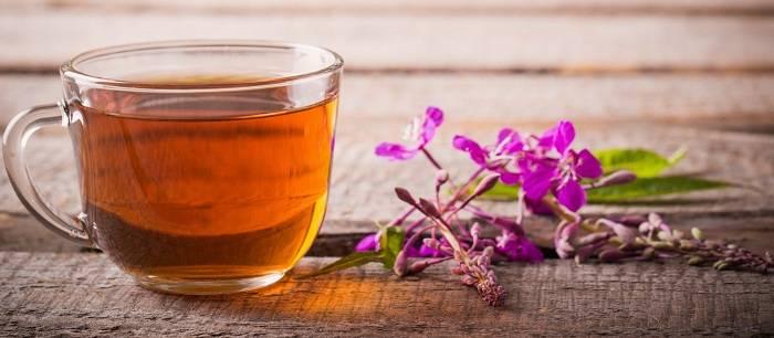 Иван-чай опасен, или кому и чем на самом деле может быть вреден кипрей