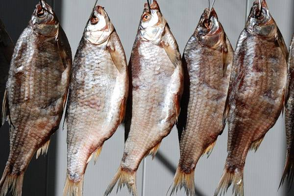 Сонник вяленая рыба карась. к чему снится вяленая рыба карась видеть во сне - сонник дома солнца