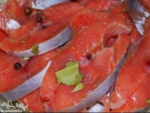 Засолка красной рыбы в рассоле домашних условиях