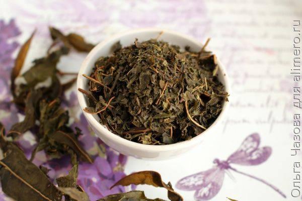 Чай из листьев иван-чая и тимьяна ползучего: новый способ ферментации