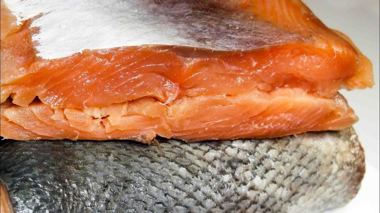 Как засолить красную рыбу по простым и дешевым рецептам?