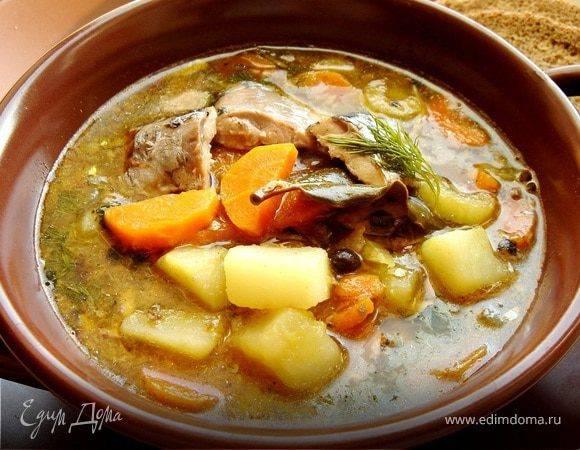 Уха из горбуши — очень вкусный рецепт рыбного супа