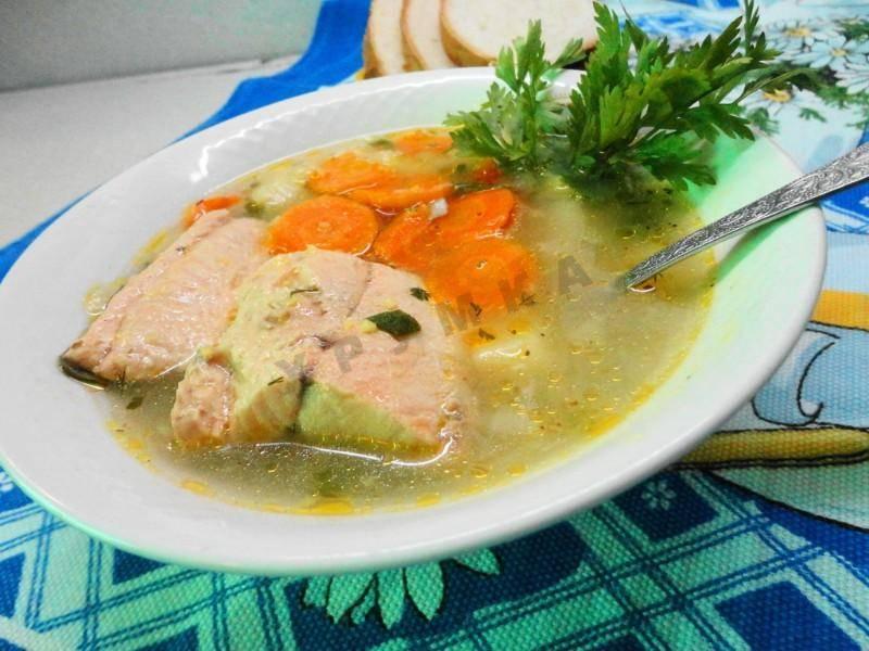 Уха классическая – рецепт первого блюда из рыбной мелочи и крупной морской рыбы. рецепты классической ухи с картофелем, водкой, пряностями