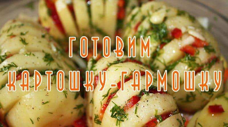 "Картофель ""гармошка"""