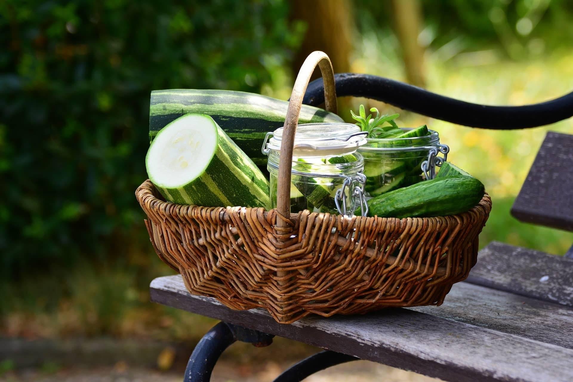 Рецепт малосольных огурцов быстрого приготовления