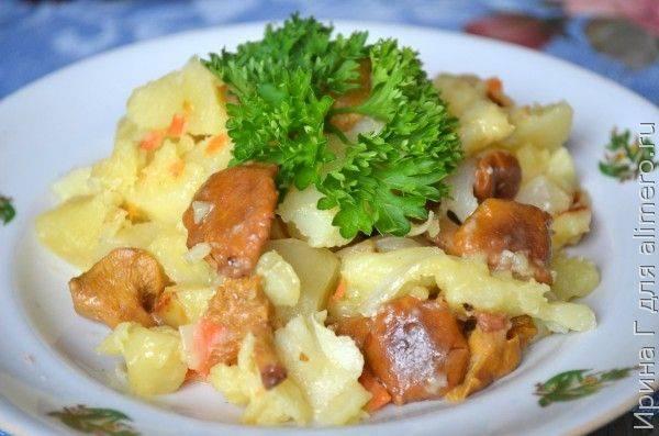Готовим жареные лисички с картофелем