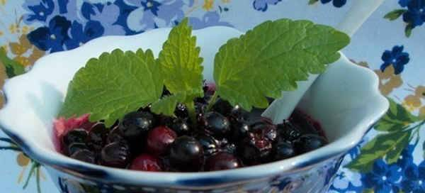 Ирга - рецепты заготовки на зиму компотов, варенья и других вкусных блюд