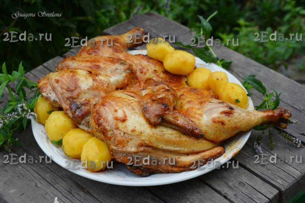 "Курица ""аппетитная"""