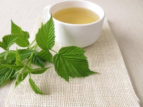 Чай из садовых листьев