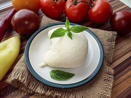 Производство сыра в домашних условиях как мини-бизнес