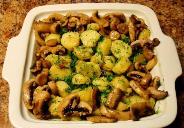 Вкусные рецепты белого гриба с картошкой