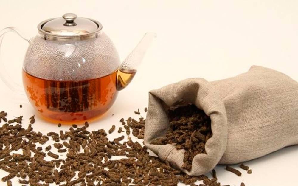 Как ферментировать иван-чай должен знать каждый