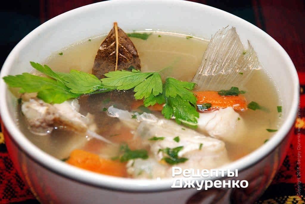 Уха из красной рыбы - рецепты из семги, горбуши, лосося, форели, кеты