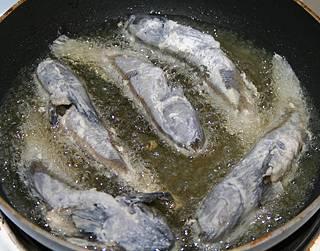 Черноморский бычок: фото, рецепты приготовления