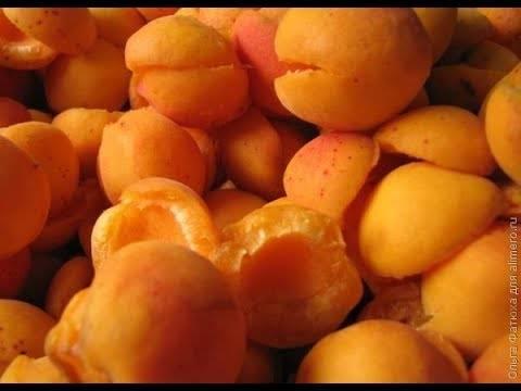 Рецепты абрикосового варенья с разными орехами - спрячьте оранжево-ореховое лето в банку