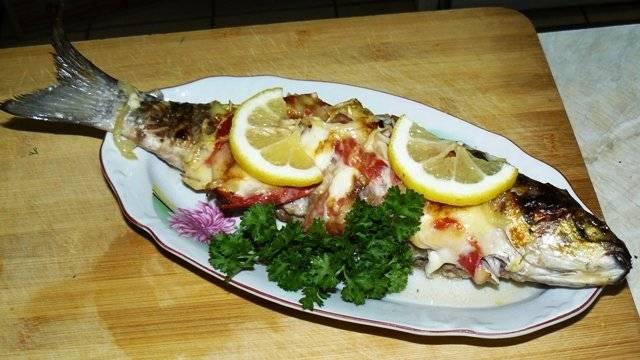 Кефаль – что за рыба, какие блюда можно приготовить из этого вкусного продукта?