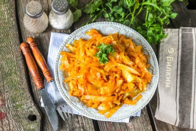Тушеная капуста - лучшие рецепты. как быстро и пошагово приготовить тушеную капусту -