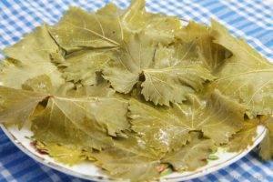 Виноградные листья для долмы на зиму: 5 рецептов заготовки (+отзывы)
