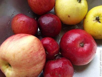Что делать, если яблоки червивые?