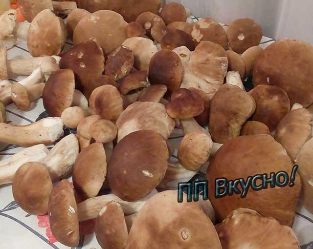 Суп-пюре из сушёных грибов - 12 пошаговых фото в рецепте