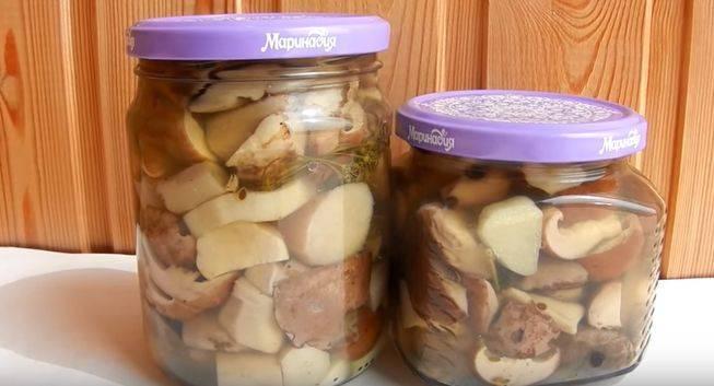 Маринованные белые грибы от моего папы