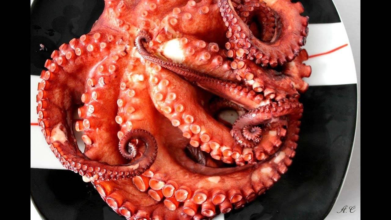 Как приготовить осьминога - wikihow