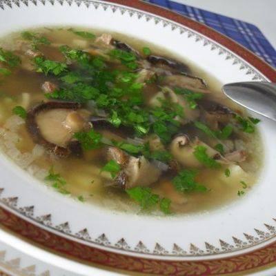 Диетический суп - грибной суп: диетический рецепт, правила, пропорции, меню