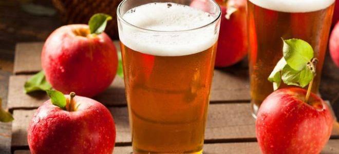Яблочный сок - лучшие рецепты вкусного и полезного домашнего напитка