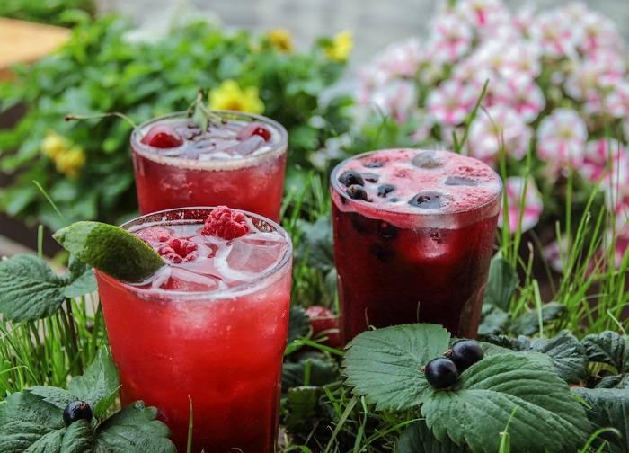 Горячие напитки для холодных дней: 3 рецепта фруктового чая