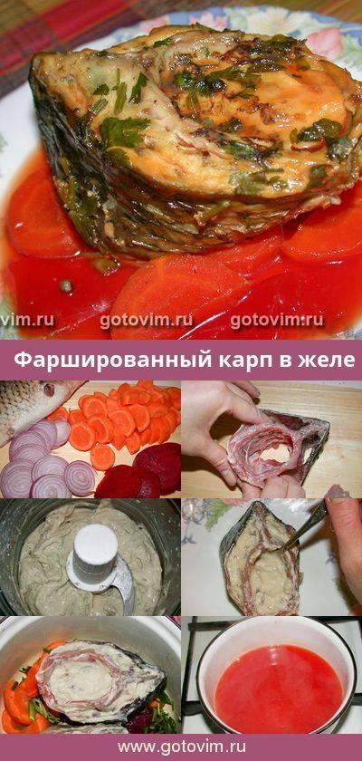 Что за рыба терпуг и как ее приготовить по вкусным рецептам?