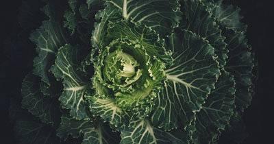 Как приготовить брюссельскую капусту: 9 рецептов