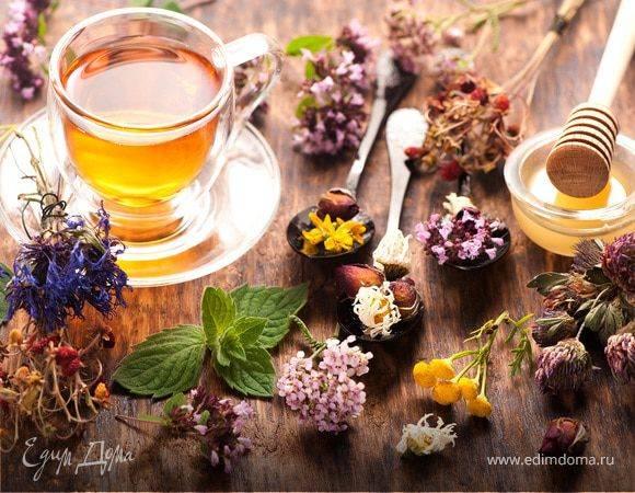 Лечебные свойства и польза брусничного чая, побочные эффекты, приготовление