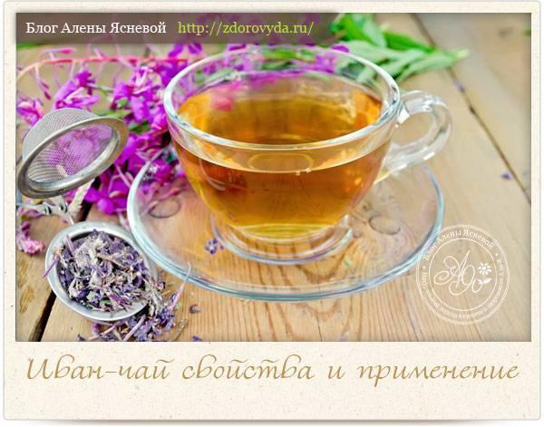 Иван-чай двойной ферментации (быстрый способ)