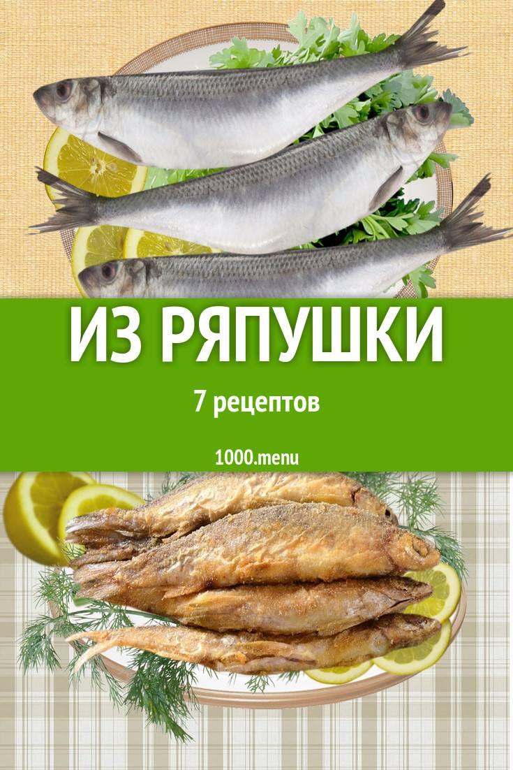 Жареный карп на сковороде – 4 вкусных рецепта приготовления рыбы