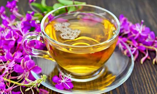 Ферментация кипрея. приготовление иван-чая (копорский чай)