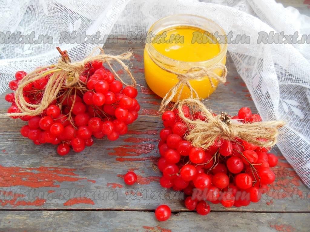 Калина с медом. полезные свойства и противопоказания. рецепты на зиму