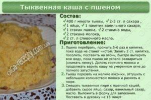Как сварить пшенную кашу на воде рассыпчатую рецепт пошагово