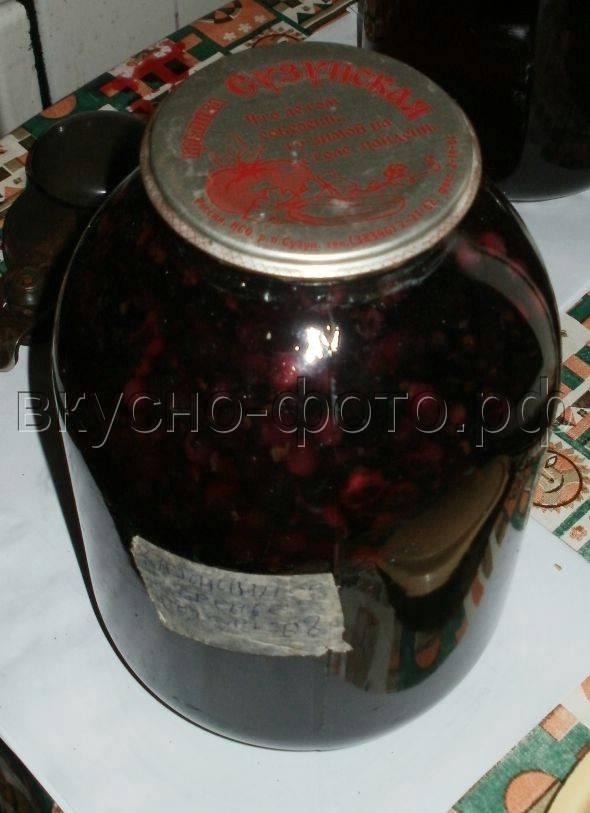 Компот из черемухи по простым рецептам на зиму, с добавлением смородины или яблок
