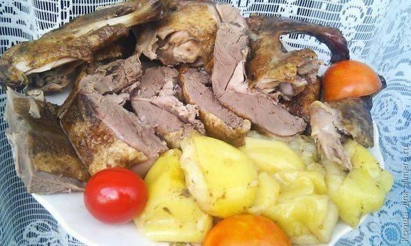 Тушеная утка кусочками - рецепты для духовки и мультиварки, с яблоками и черносливом