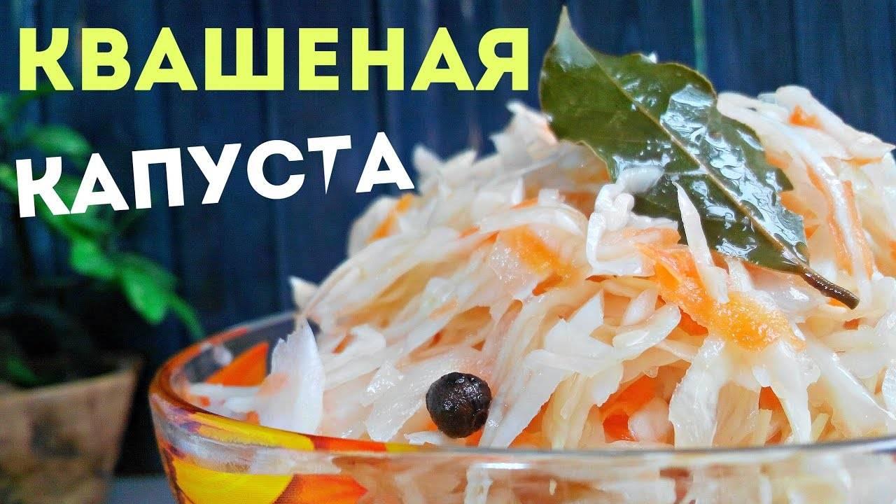 Капуста квашеная: рецепты на 3-литровую банку. как квасить капусту в домашних условиях