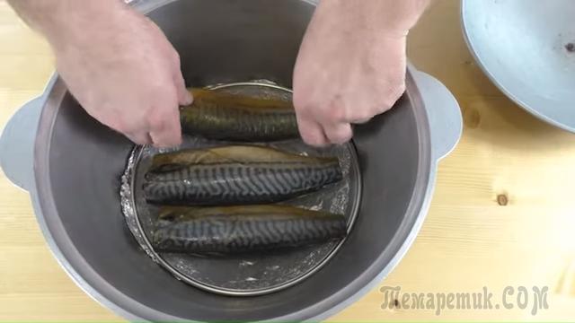 Как коптить скумбрию в домашних условиях — была рыбка простая, а стала золотая