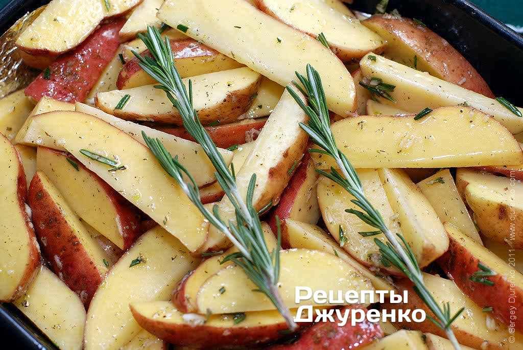 Картофель с розмарином - самые популярные рецепты картошки с розмарином
