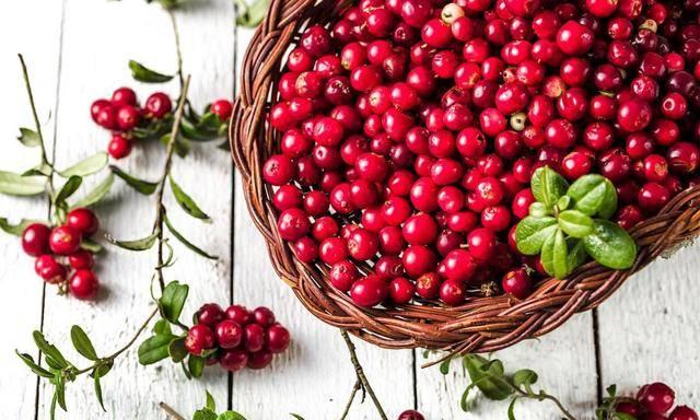 Как хранить клюкву - лучшие способы хранения ягод в домашних условиях