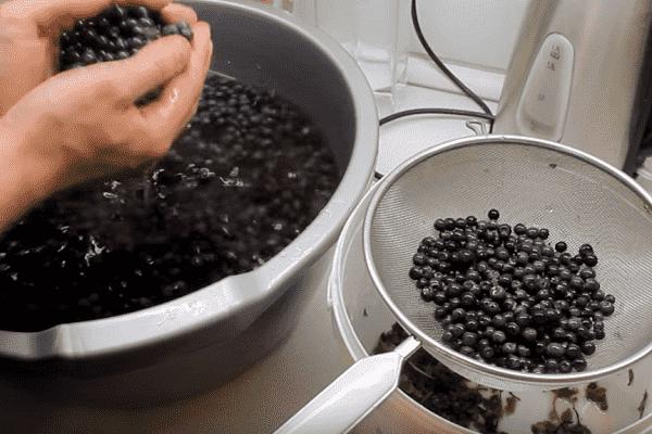 Заготовка черники на зиму